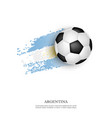 soccer ball on argentina flag vector image vector image