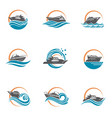 speedboat and yacht icons vector image
