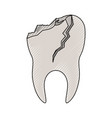 tooth with root and broken in colored crayon vector image vector image
