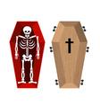 Skeleton in coffin Open casket and skull and bones vector image