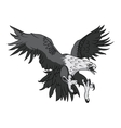 Bald Eagle or Hawk Head Mascot Graphic vector image vector image