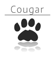 Cougar animal track vector image