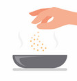hand sprinkle salt on bowl chef seasoning in bowl vector image vector image