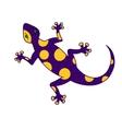 Purple yellow lizard vector image