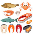 seafood fish shrimp mussels and crab on a vector image
