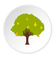 big tree with fruit icon circle vector image vector image