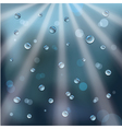 rain drops and sun rays vector image