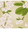 seamless texture chestnut tree flowers vector image vector image