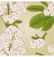 seamless texture chestnut tree flowers vector image