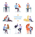veterinary doctor and animals vet clinic icons vector image
