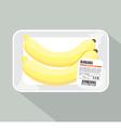 Banana Pack vector image vector image