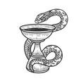 bowl hygieia symbols pharmacy sketch vector image vector image