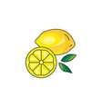 lemon icon on a white background vector image vector image