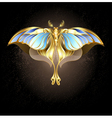 Mechanical Moth vector image vector image