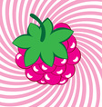 ripe raspberries background vector image vector image