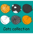 Set of six funny cats isolated on turquoise vector image vector image