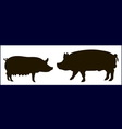 silhouette of pigs vector image