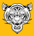 tiger angry tiger face tiger head tiger tiger vector image