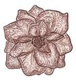 Vintage floral of blooming flowers vector image vector image