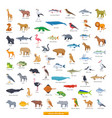 animals africa collection vector image
