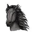 Black proud running horse portrait vector image vector image