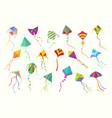 flying kites set beautiful geometric shaped vector image vector image