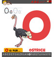letter o worksheet with cartoon ostrich animal