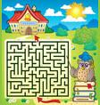 maze 3 with owl teacher vector image vector image
