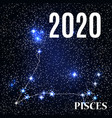 symbol pisces zodiac sign with new year vector image vector image