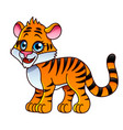 cartoon tiger isolated vector image