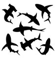 Shark silhouettes vector image