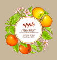 apple frame vector image vector image