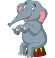 cartoon cute elephant sitting vector image vector image