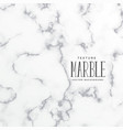 elegant marble tecture pattern background vector image vector image