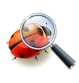 Magnifying glass and Ladybird vector image vector image
