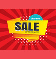 sale banner templates for posters vector image