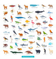 animals south america collection vector image