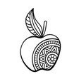 apple coloring page vector image