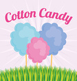 Candy design vector image vector image