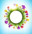Circle frame with grass flowers and sunlight vector image vector image