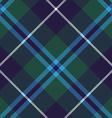 douglas tartan fabric texture seamless diagonal vector image vector image