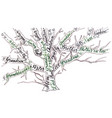 family tree hand drawn calligraphy vector image vector image
