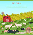 goats pigs and chicken animals at the farm vector image vector image