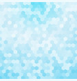 light blue hexagon background vector image vector image