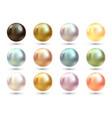 realistic varicoloured pearls set precious vector image vector image