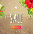 Sale Card vector image vector image