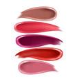smears lipstick realistic cream and liquid vector image vector image