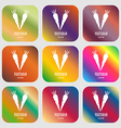 vegetarian cuisine sign icon Nine buttons with vector image vector image