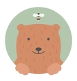 Animal set Portrait in flat graphics - Bear vector image