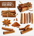 cinnamon star anise transparent set vector image vector image